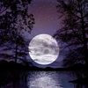 neo_lunar_haze userpic