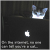 No one can tell you're a cat