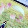 Rinoa flowerfield