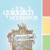 hih | quidditch mod