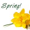 michelel72: Spring-Yellow