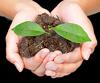 rebirth, growing, nurture, greenhouse2