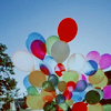 Stock: Balloon Bunch