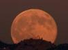 Sheila Finch: moonrise