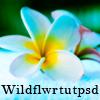 Wildflower Tutorials and PSD Files