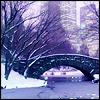 NY Stone Bridge Snowy