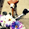 a_gypsy_rider userpic