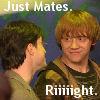 Just Mates H-R