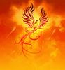 phoenix600 userpic