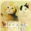 Giselle: kittens