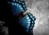lo_merando_anna userpic