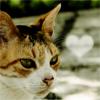 kitaru05 [userpic]