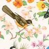 mouse_wedding userpic