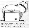cat: kittyloaf box