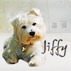 Jiffy - head tilt!
