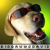 bigdawwwgdavid userpic