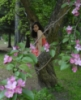 Эльфийский лес