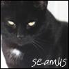 Jae: Seamus 2