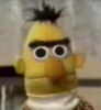 Bert Shocked