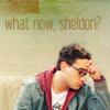 What now Sheldon