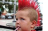 punk not dead