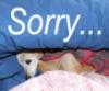 tt: sorry