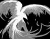 phoenix_on_ice