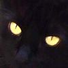 Penny eyes