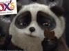 the_fat_panda userpic