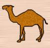 camel_ru userpic