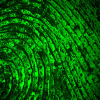 Dizzy-Fingerprint