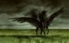 My wallpaper!! Pegasus in a storm