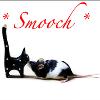 buzziecat: *Smooch* cat/rat