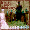 the_shrubbery userpic