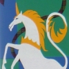 hwin_the_horse userpic