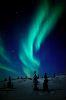 auroraborealis_ userpic