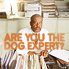 Are you the dog expert?