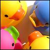 duckys