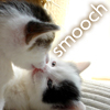 cosmic: Cat: Kitty baby smooch
