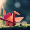 fleur_eternelle: love