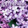 EntreNous lilacs
