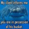 my client informs me