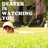 Rosie: Dexter - watching you