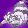 whiteracoon userpic
