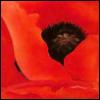 opiumtreaty userpic