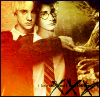 ~ Bruno  ~: harry draco
