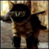 neighbor_ninja userpic