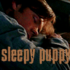 spn - sam sleepy puppy