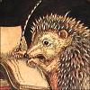 hedgehog writing, scribble scribble scribble