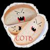 COTB01